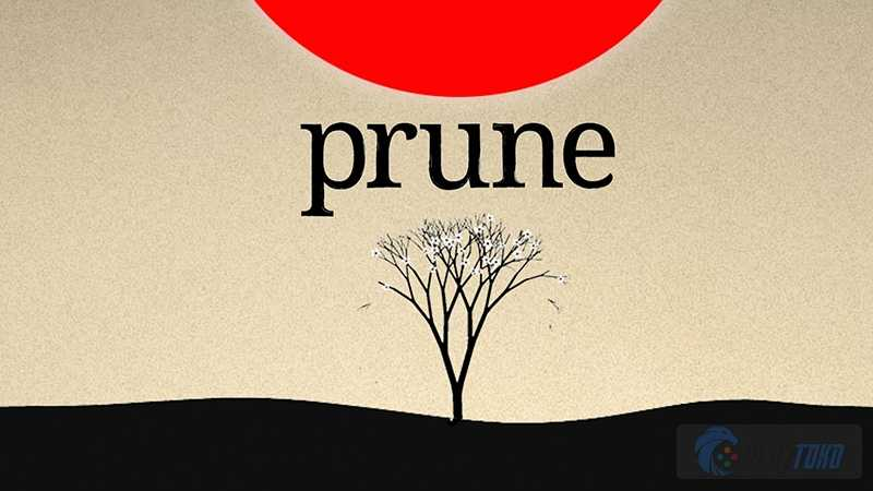 Image result for Prune game